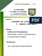 Monografía Cultivo de Protoplastos 2014I