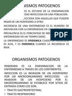 ORGANISMOS PATOGENOS 1