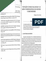 Punição e Estrutura Social - As Idéias Criminológicas de Ruche e Kirchheimer - Rodrigo Fudoli