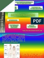 Sistema Endocrino PPT