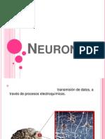 Diapositivas- Neurona 24 de Mayo (1)