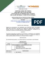 Programa Auditor Lider Bpm-bpc-Iso 9001[1]