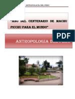 Chongos Bajo.docx Final