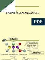 Clase 03; Biomoleculas Organicas II