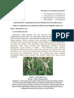 Arti Penting Agroekologi Bagi Pembangunan Pertanian
