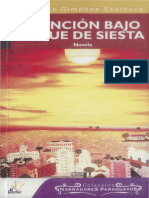 Asuncion Bajo Toque de Siesta Novela 0