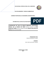 Informe Ppp Corregido Roger