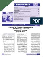 Joint Venture y Consorcio 2