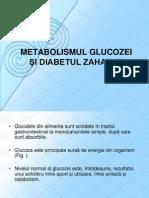 Curs 6 Metabolismul Glucidic.diabet Zaharat. Hipoglicemii