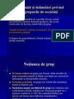 Defini+úii +ƒi delimit-âri privind grupurile de societ-â+úi
