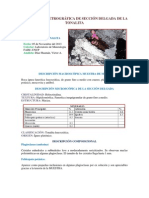 Descripción Petrográfica de Sección Delgada de La Tonalita