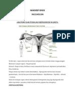 Anatomi Dan Histologi Reproduksi Wanita