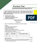 Std VI - Practical Test - Model Test Papers