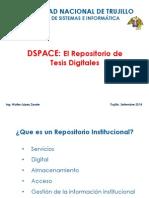 Repositorio Dspace Wlz