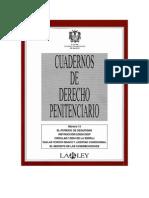 Derecho penitenciario 13
