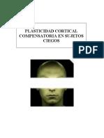 plasticidad cortical compensatoria en la corteza visual primaria
