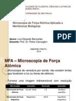 Seminário AFM