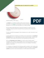 Características y Propiedades Para La Salud de La Cebolla