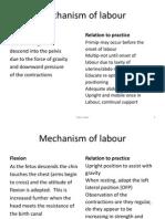 Mechanism of Labour
