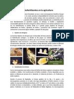 Los biofertilizantes en la agricultura.pdf