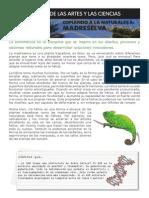 Ficha Biomimetica Madreselva Cas