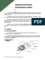 794_El mapa y la brújula(1).pdf