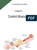 311.Control.muscular (3)