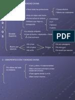 7. Atributos Entitativos y Operativos.