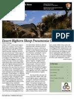 OneHealth Newsletter Fall13 Bighorn