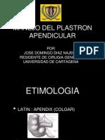 plastronapendicular-130321000036-phpapp01