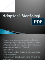 Adaptasi Morfologi