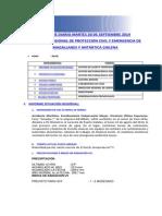 Informe Diario Onemi Magallanes 30.09.2014