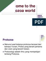 Welcome to Protozoa World
