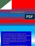 Los Microorganismos de Mateo y Felipe
