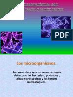 Los Microorganismos Por Agustina y Samira
