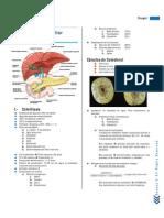 Resumen. Patología Biliar