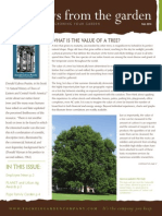 Fockele Fall Newsletter 2014