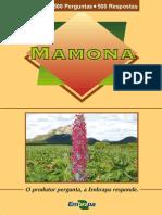 Mamona- 500 Perguntas