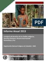 Informe Anual 2013 Derechos Humanos ONIC