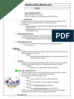 Anatomia Colon, Recto y Ano