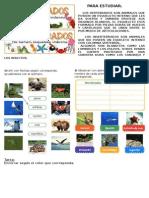 Animales 2° vertebrados invertebrados