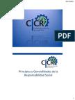 CICR Principios y Generalidades de RS