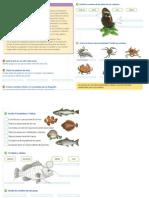 Actividades Ciencias Naturales de 2° grado animales