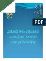 Conducció...pdf