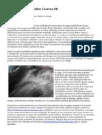 Article   Caspa Remedios Caseros (9)