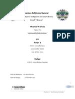 Ondas mecánicas (interferencia)