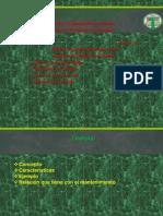 Diapositivas de Coox
