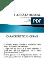Floresta Boreal - Word 2003
