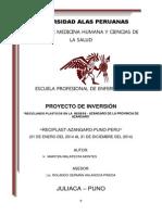 Proyecto de Inversion- Maritza Malatesta Montes