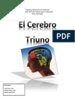 Cerebro Triuno Psicologia